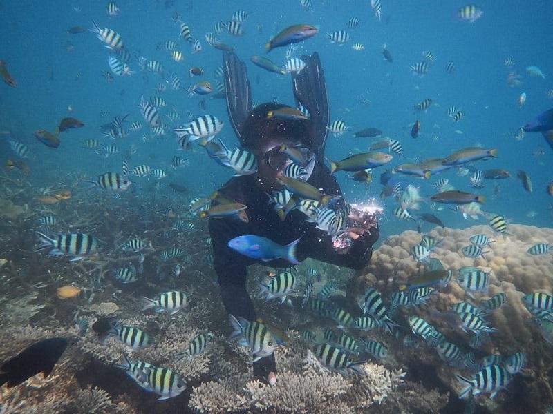 menu underwater